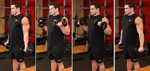 Сгибания зоттмана. упражнение на силу рук