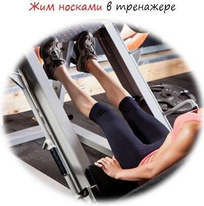 Жим ногами в тренажере: техника выполнения, работающие мышцы, польза и противопоказания
