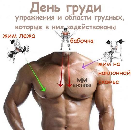 Убрать жир с грудных мышц у мужчин упражнения