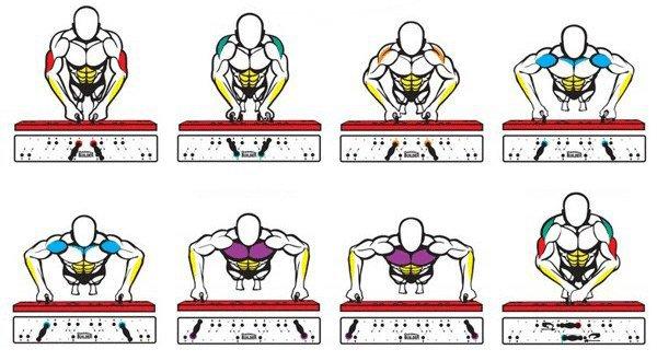 Отжимания с широкой постановкой рук: техника выполнения, работа мышц, разновидности