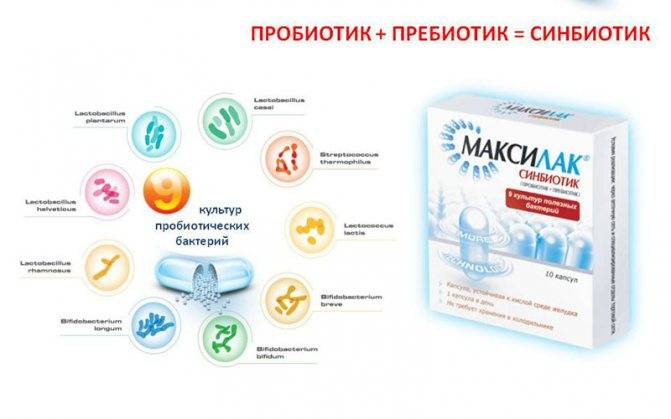 Пробиотики для кишечника - список