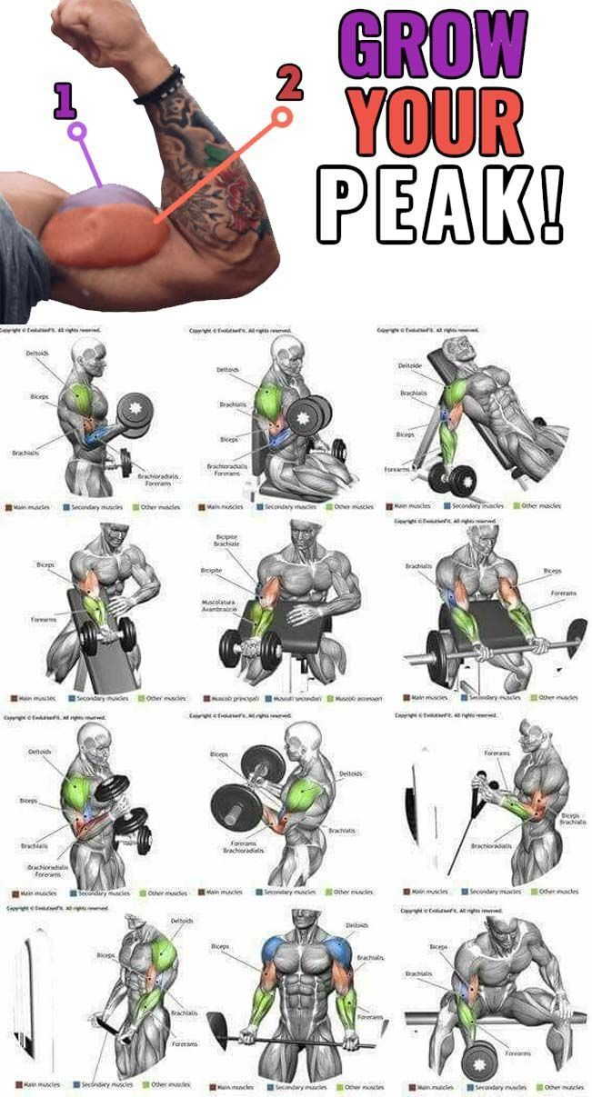 Упражнения в домашних условиях. топ лучших.