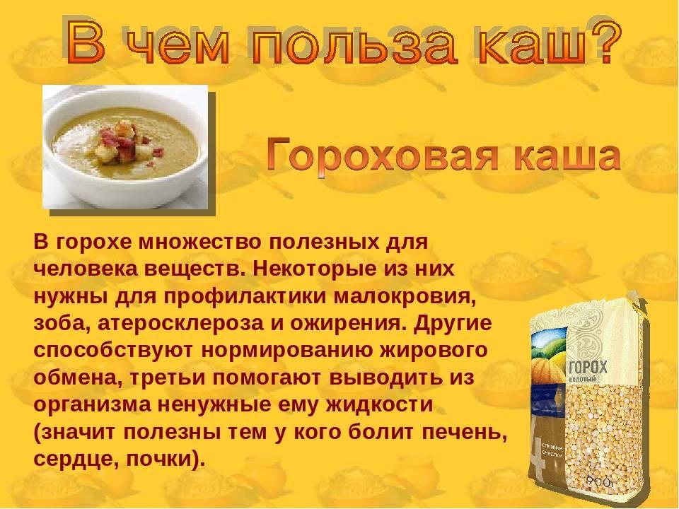 Овощные супы польза и вред. чем полезны супы-пюре