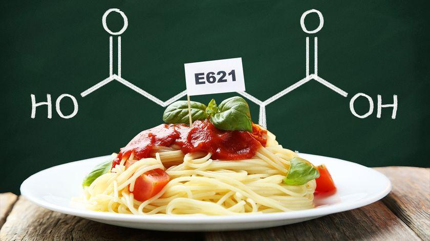 Пищевой усилитель вкуса е621 — что это такое?
