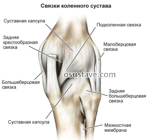 Как укреплять суставы и связки?