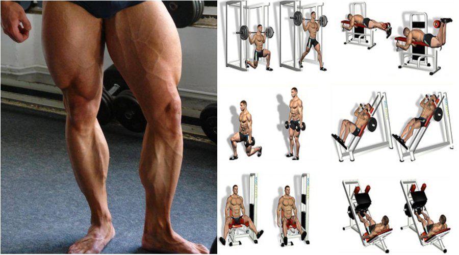 Лучшие упражнения для ног – зожник  лучшие упражнения для ног – зожник