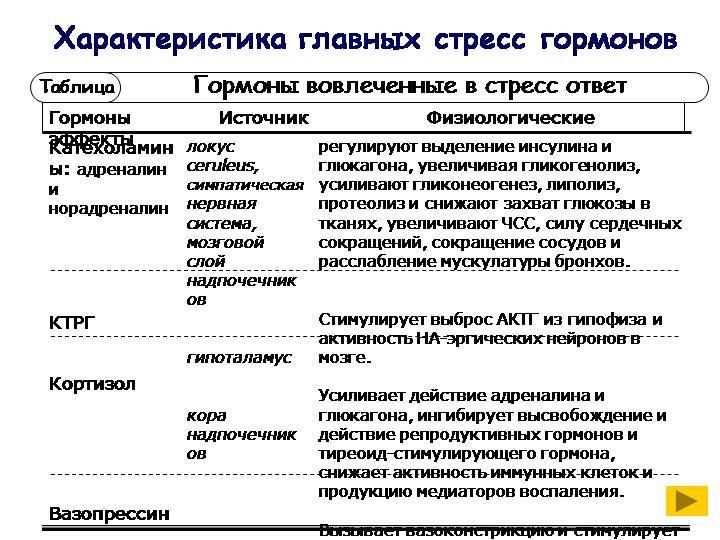 Что такое катаболизм, анаболизм. какое отношение они имеют к метаболизму и как происходят? :: syl.ru