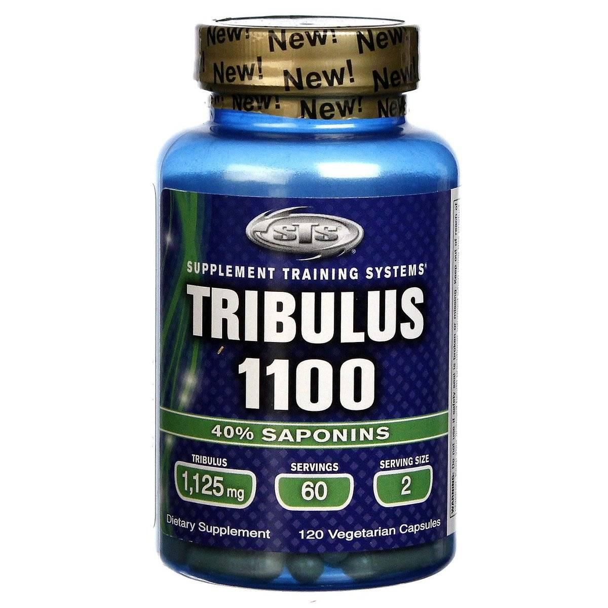 Эффект трибулус террестрис | удивительные свойства препарата