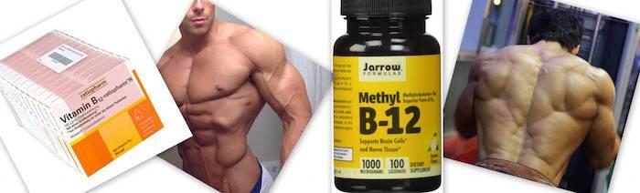 Витамин в в бодибилдинге: дозировка, как принимать