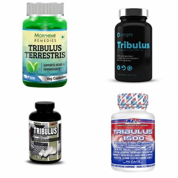 Что такое трибулус? инструкция по применению, отзывы