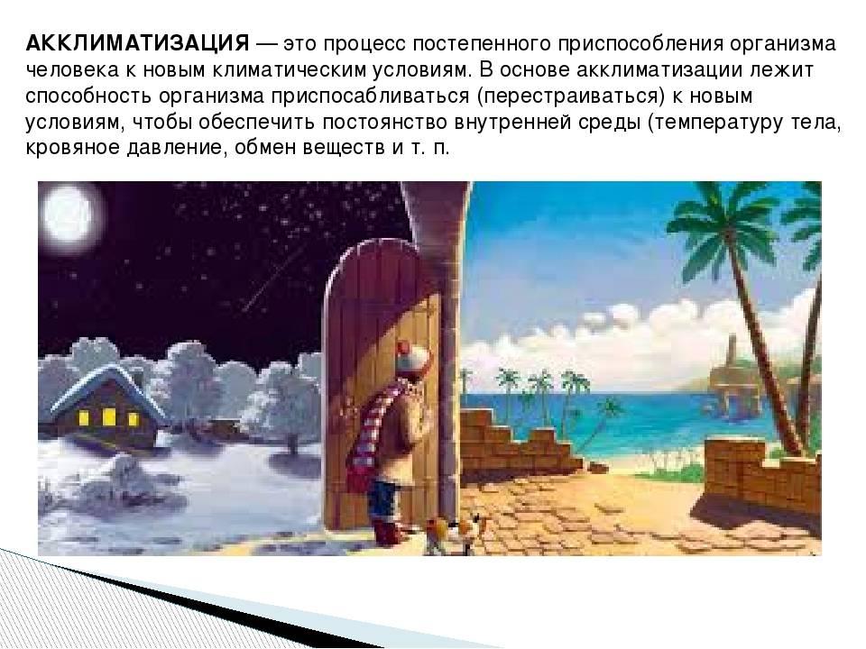 Акклиматизация после моря: симптомы, лечение