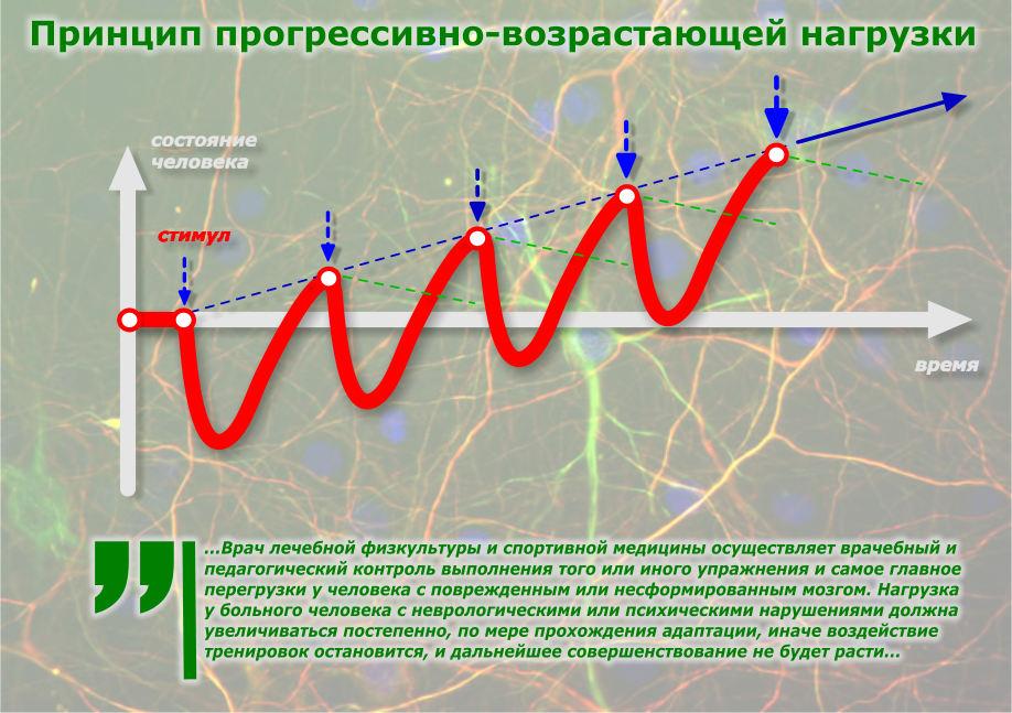 Линейное циклирование (периодизация) нагрузок в тренировках для роста силы и массы