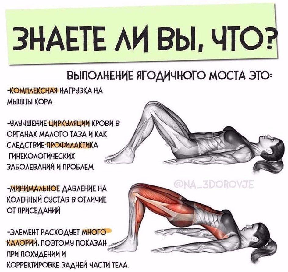 Как накачать боковые мышцы ягодиц: обзор самых эффективных упражнений - tony.ru