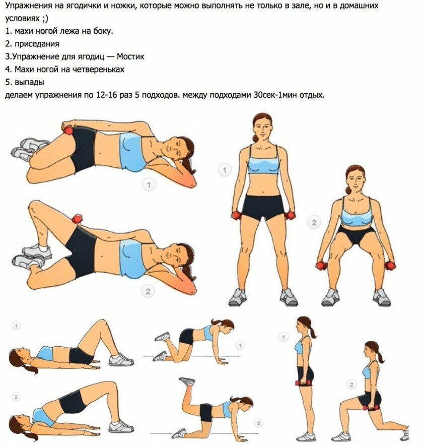 Как накачать ноги? топ-10 лучших упражнений с фото