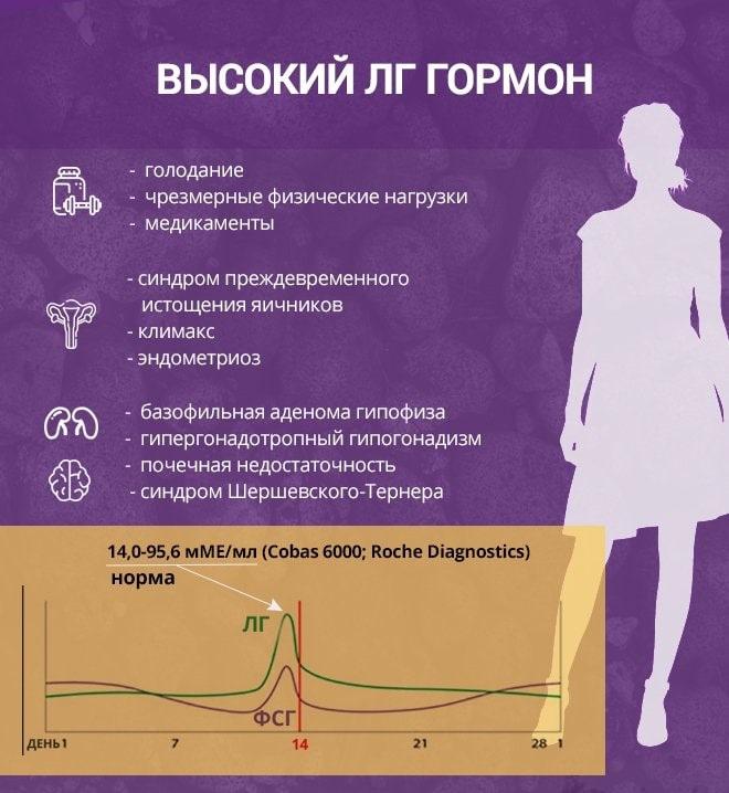 Женский гормон эстроген: как повысить его уровень