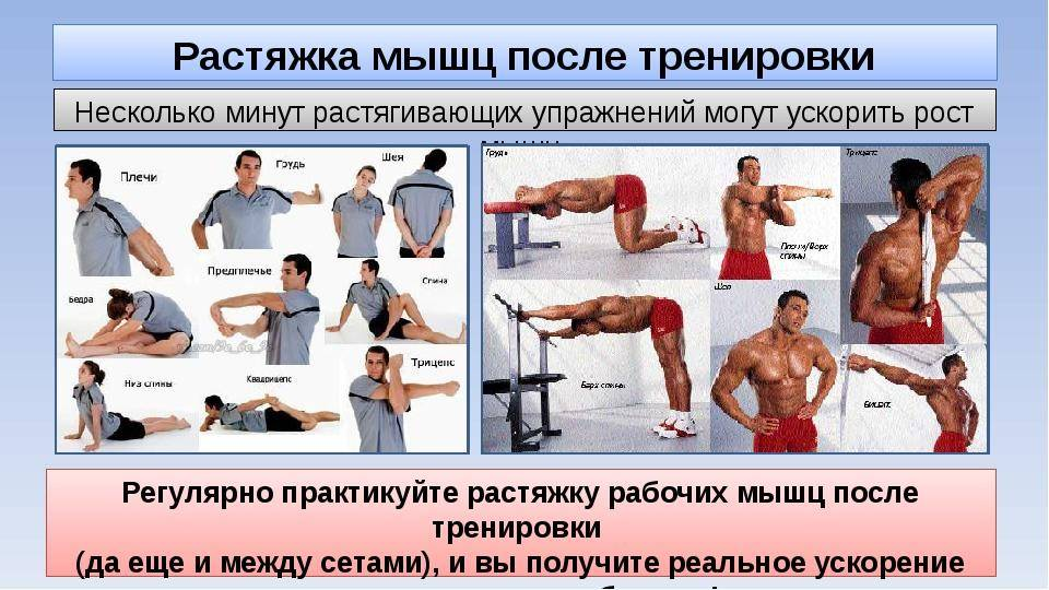 Как накачать внутреннюю часть грудных мышц: топ-7 упражнений и подробное видео | бомба тело