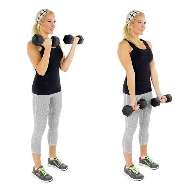 Комплекс упражнений с гантелями для женщин в домашних условиях