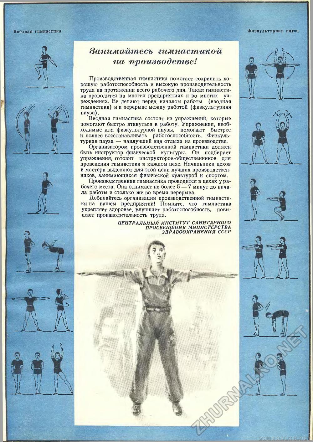 Принципы построения силовых тренировок
