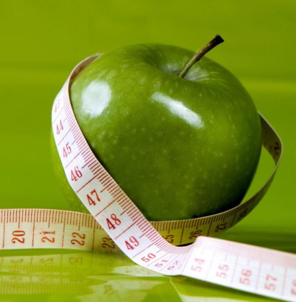 Белковый день для похудения: меню, рецепты, польза, вред и противопоказания