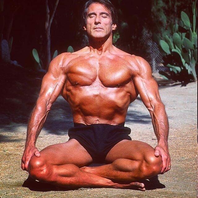 Программа тренировок фрэнка зейна на массу. программа тренировок фрэнка зейна – занимайся как легендарный атлет
