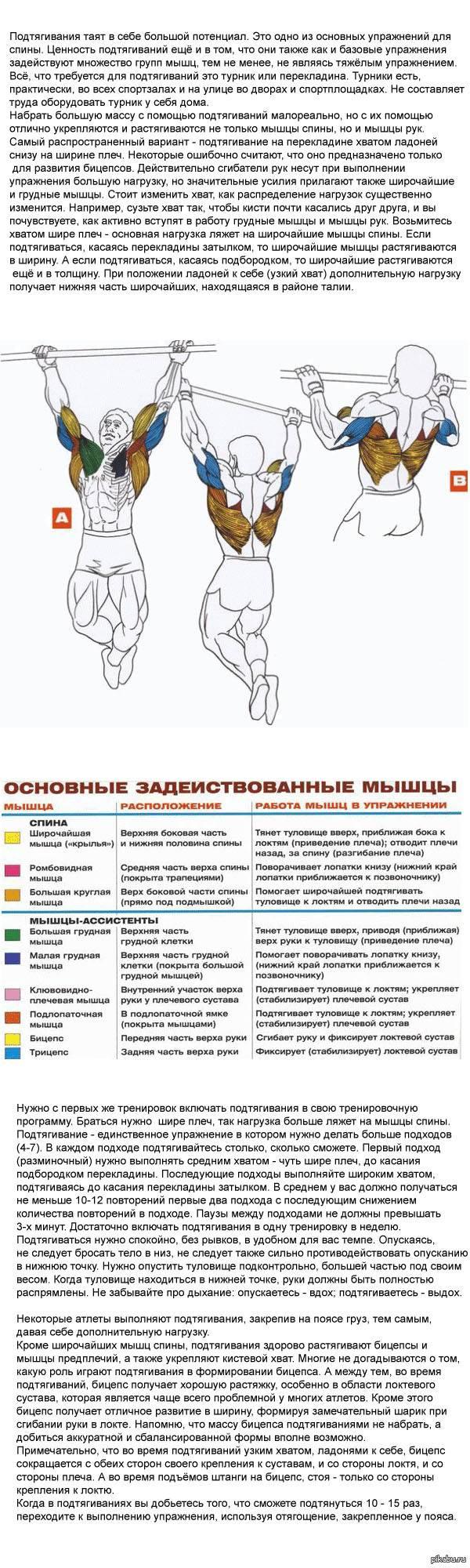 Как тренироваться, чтобы накачать мышцы на турнике