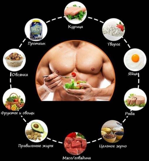 Продукты богатые белком для набора массы: 10 лучших источников протеина для спортсменов