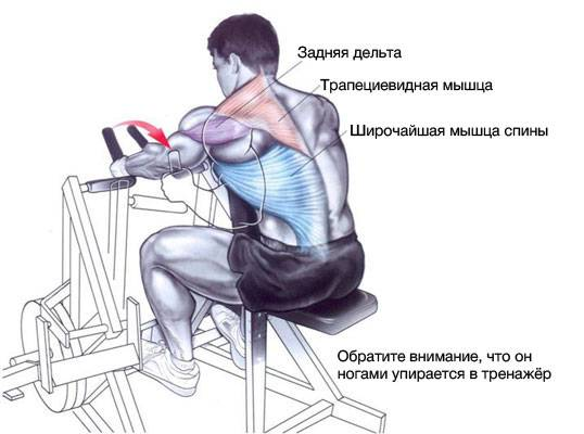 Тяга горизонтального блока: знакомство с упражнением