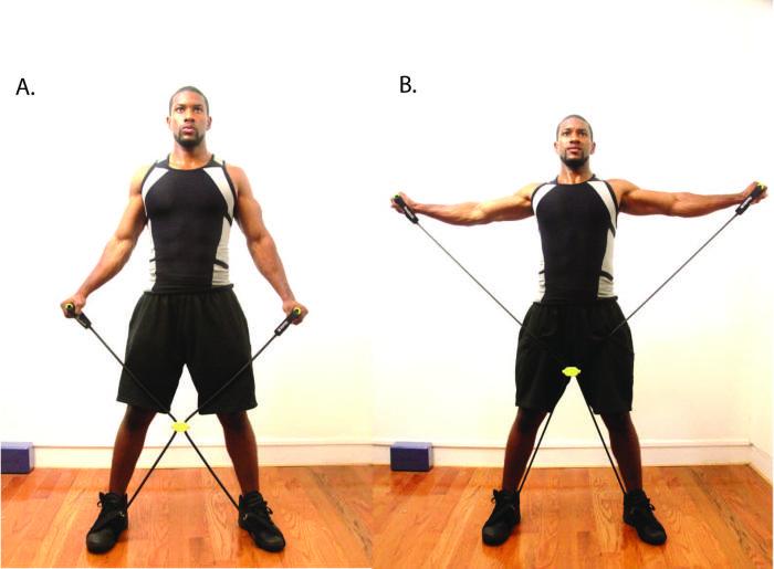 Базовые упражнения для мышц спины на массу
