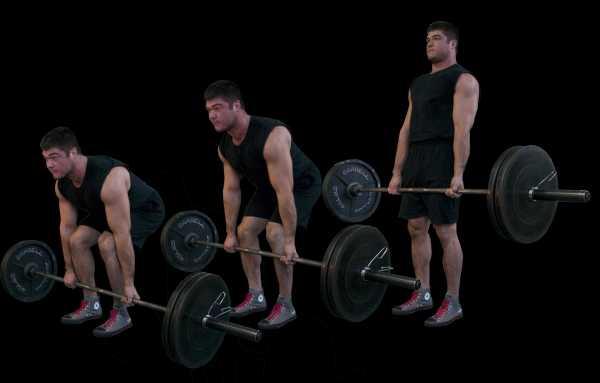 С какими мышечными группами делать становую тягу: спина или ноги? • bodybuilding & fitness