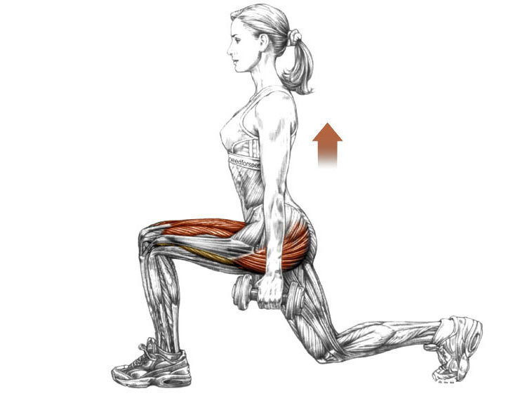 Перекрестные, диагональные или выпады «реверанс»: техника выполнения упражнения