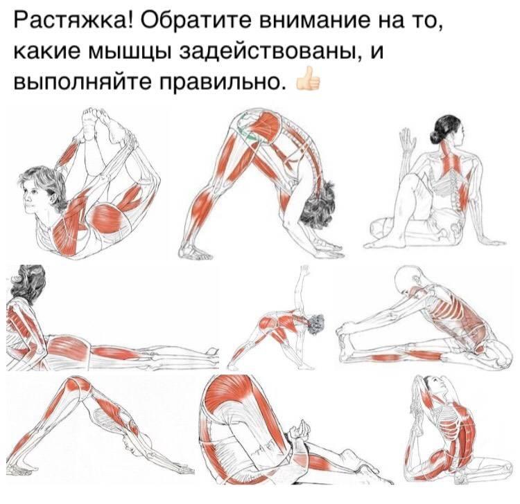 Как делать растяжку после тренировки