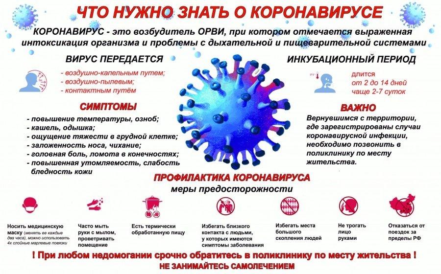 Почему нельзя сдавать тест на коронавирус с признаками орви: причины