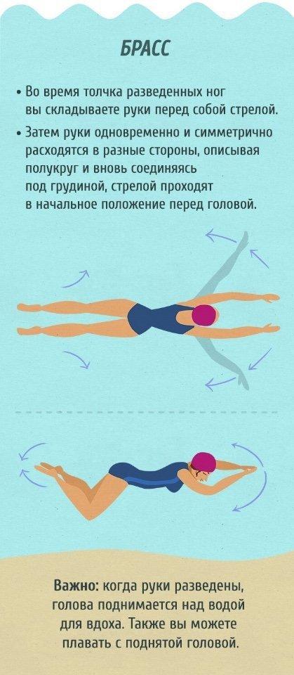 Как научиться плавать на спине на большие расстояния. секреты и советы