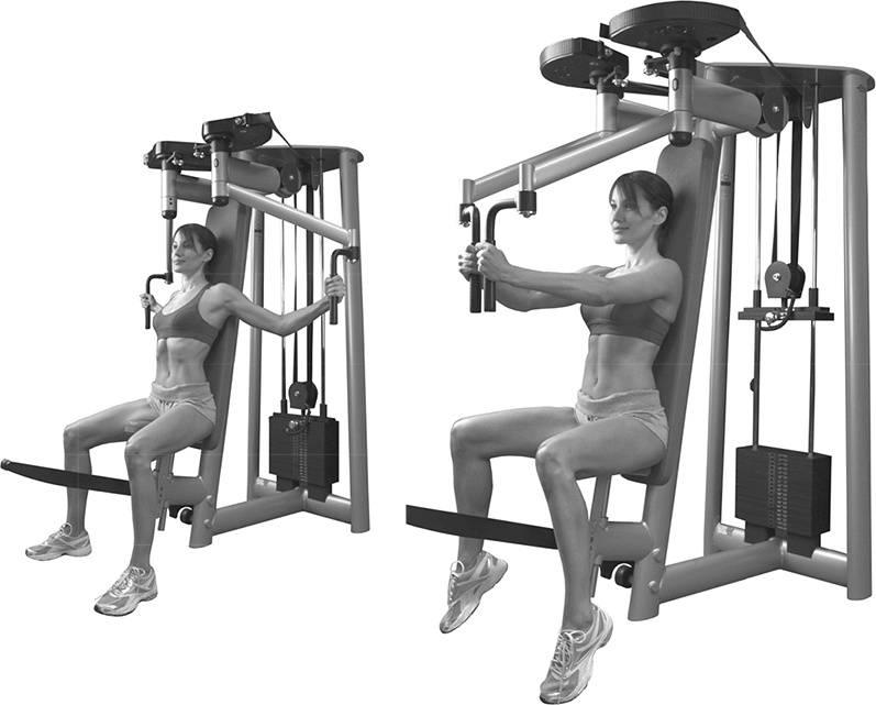 Упражнения на грудь в тренажерном зале (в картинках) | фитнес