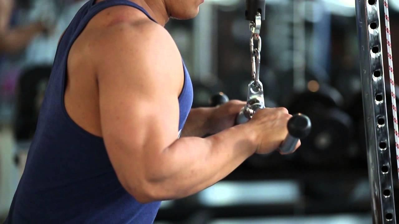 Разгибание рук на блоке стоя — sportfito — сайт о спорте и здоровом образе жизни