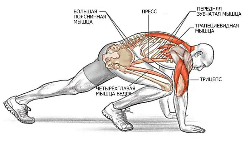 Упражнение лодочка для укрепления спины и упругости ягодиц