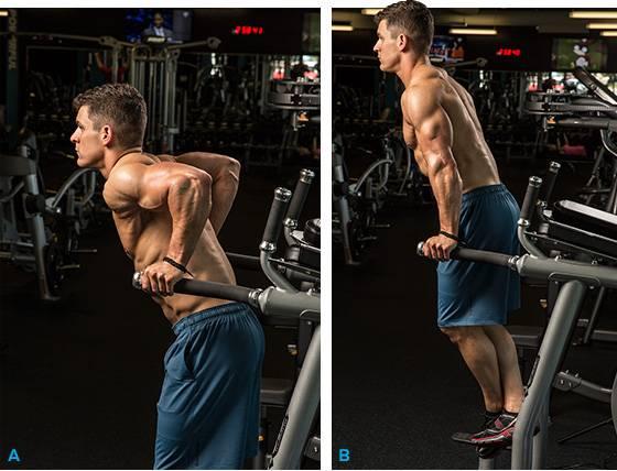 5 базовых упражнений на трицепс