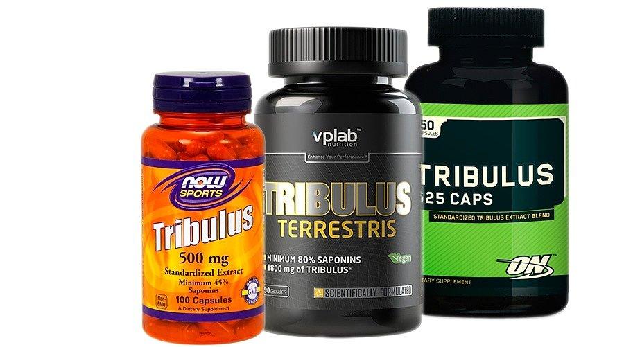 Трибулус: как принимать этот препарат и зачем он нужен для бодибилдинга