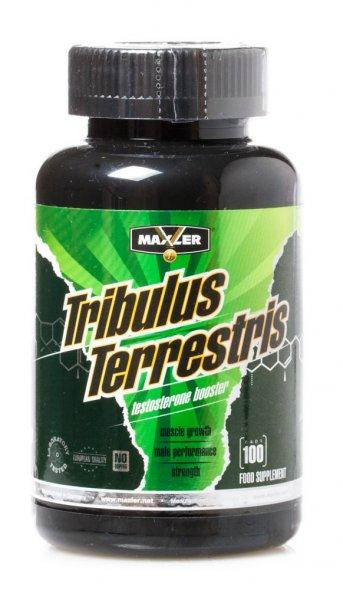 Трибулус террестрис (tribulus terrestris): как принимать, эффект для мужчинам, инструкция по применению