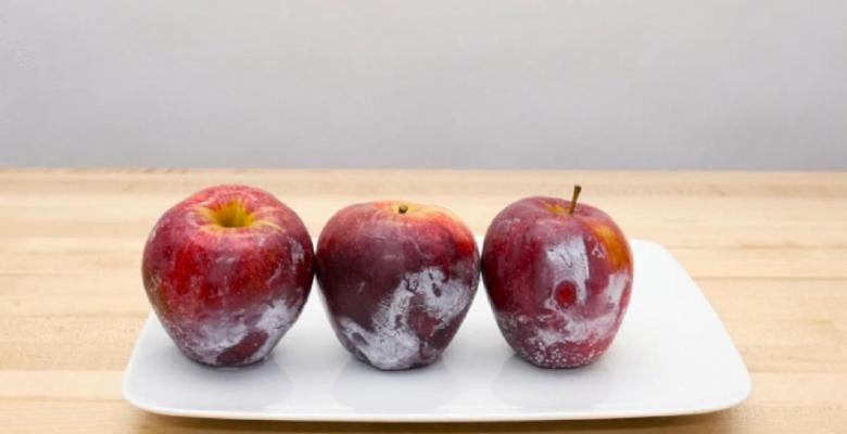 Как обработать яблоки воском в домашних условиях