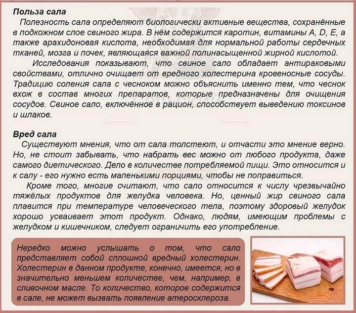 Сало: польза и вред сала для организма, полезные свойства сала и почему оно бывает вредно для здоровья