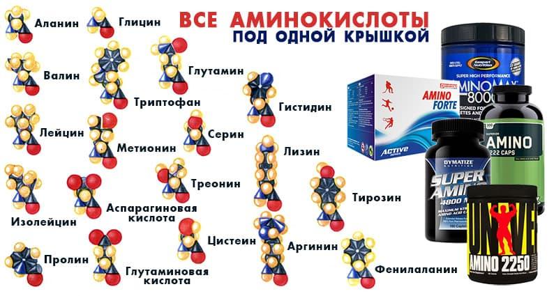 Аминокислота лизин: лучшие добавки, польза и вред, применение в бодибилдинге