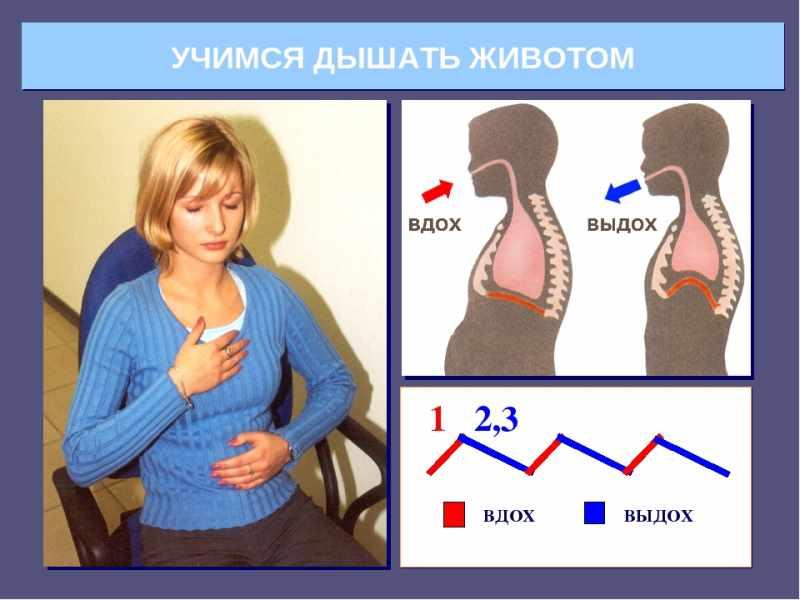 Как правильно дышать диафрагмой | оздоровительная школа система дыхания