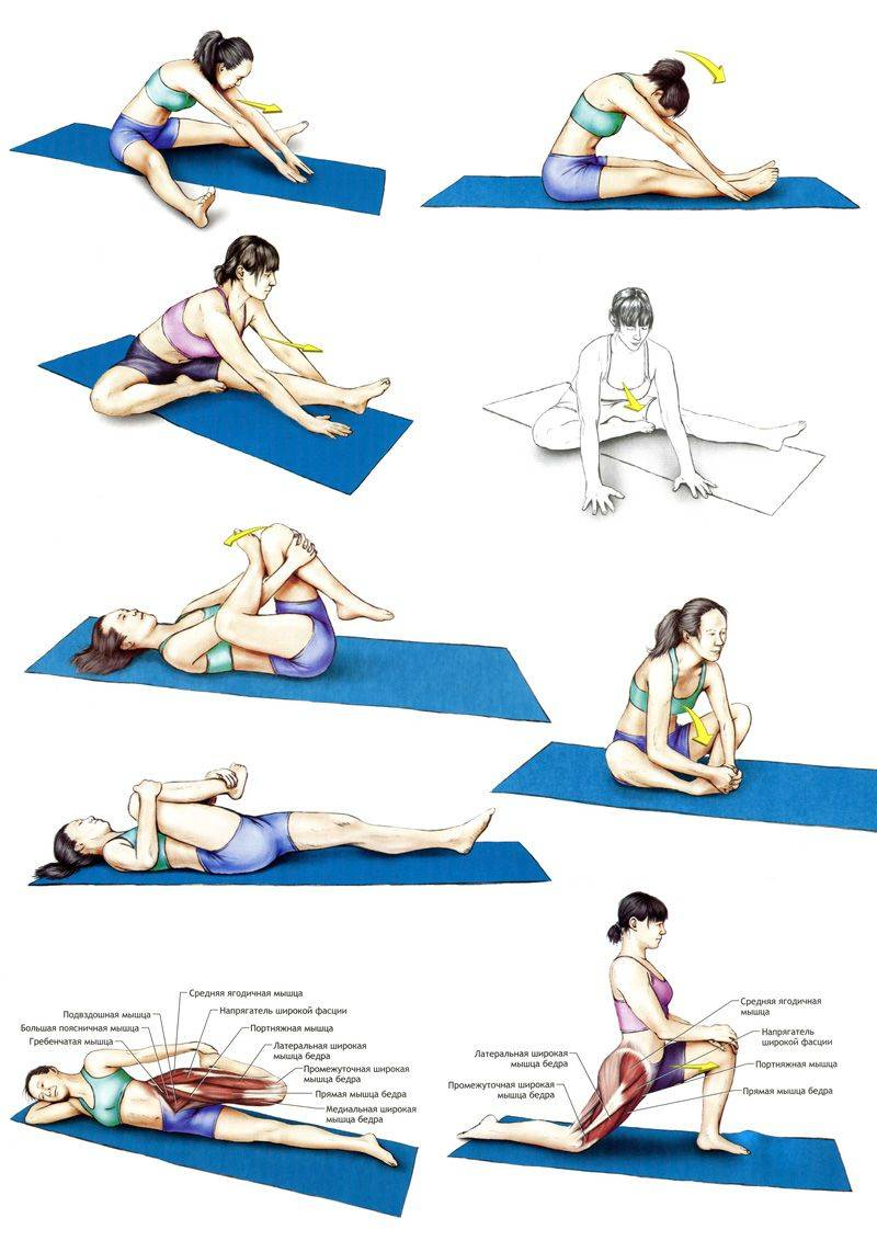 Как сесть на шпагат за 30 дней: советы, ошибки и упражнения на гибкость