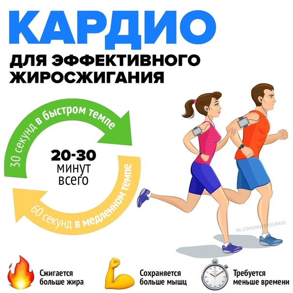 Интервальная тренировка для сжигания жира: суть, виды и программа
