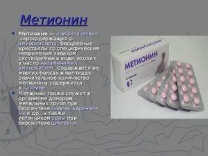 Метионин в спорте и бодибилдинге: польза и вред для организма человека, как принимать и стоит ли? отзывы учёных | promusculus.ru