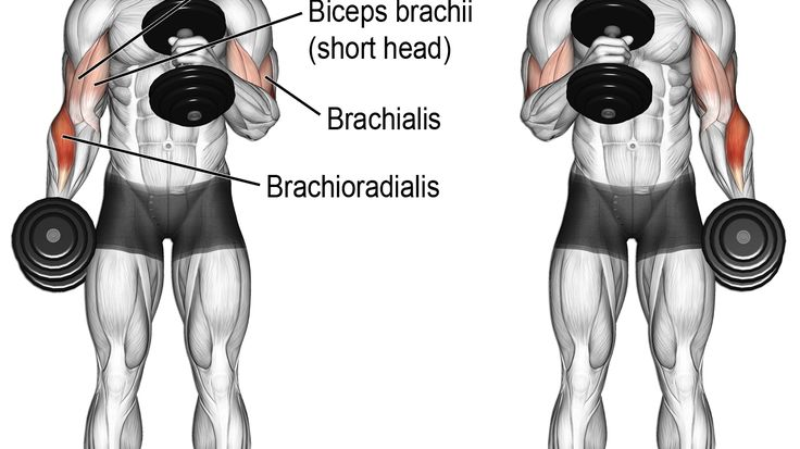 Упражнения для клювовидно плечевой мышцы - здоровые кости