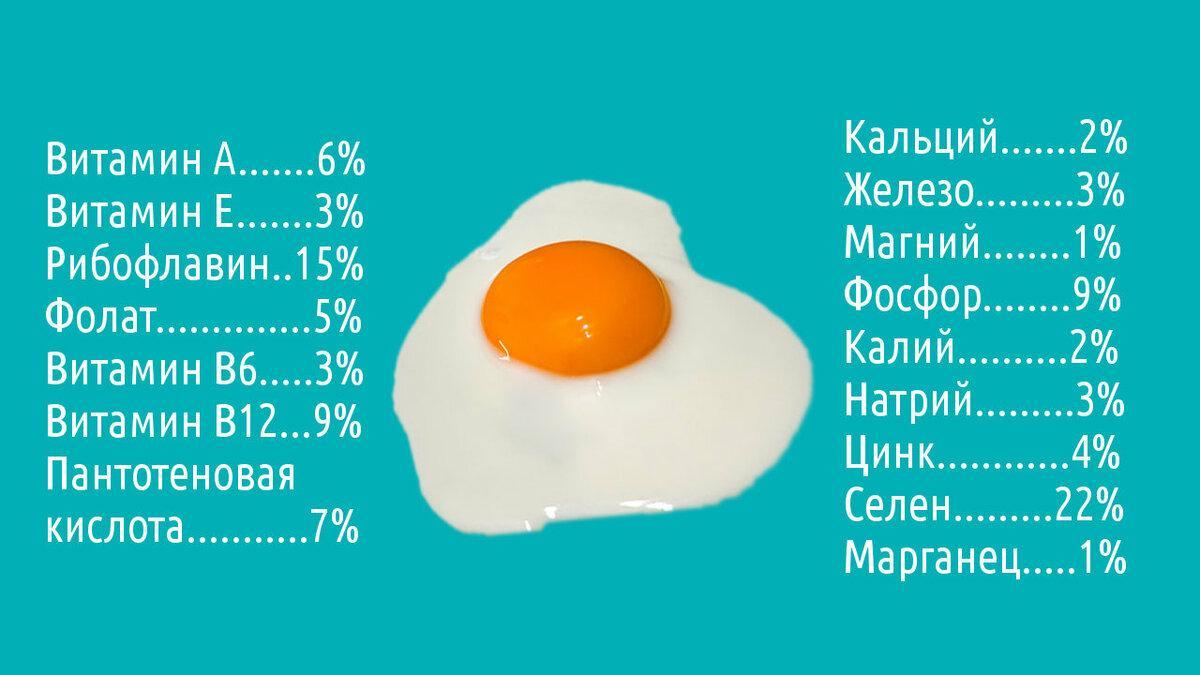 Польза и вред яичных продуктов в питании человека
