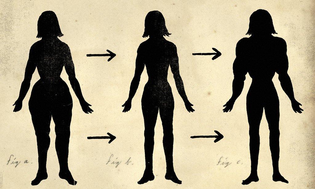 Подкожный жир: для чего нужен и как узнать норму жира в организме
