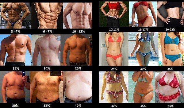 Норма жира в организме женщины и мужчины